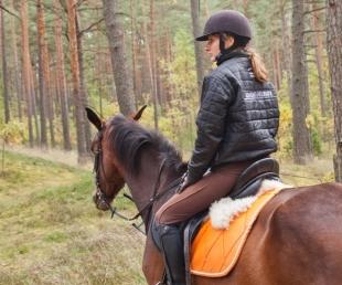 Adventure Ride zirgu stallis un izjādes