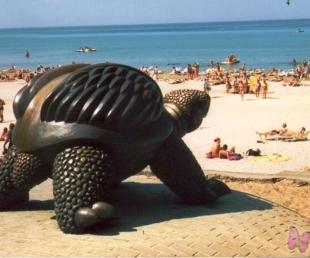 Jūrmalas bruņurupucis