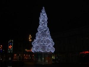 Ziemassvetku_egle_Irija