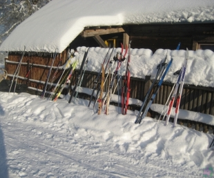 """""""Kalna ligzda"""" Kalnamuižā sporto ziemā un vasarā(ARHĪVS)"""