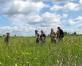 Pļavu diena Līgo noskaņās Ķemeru nacionālajā parkā(ARHĪVS)