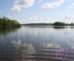 Viraudas ezers