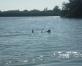 Labākās Latvijas vietas ūdensslēpju cienītājiem