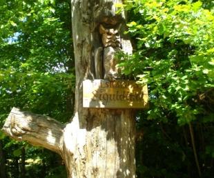 """Meža ainavu parks - Pilskalnes """"Siguldiņa""""."""