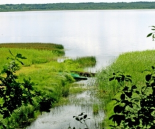 Burtnieku ezers