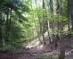 Latvijas dižumi ( Nr. 4- kalni)