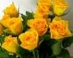 Visus aicina uz rožu izstādi Rēzeknē(ARHĪVS)