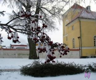 Ventspils notikumu kalendārs no 17.janvāra līdz 23.janvārim(ARHĪVS)
