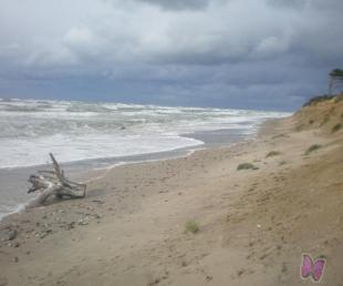 Kad krastā izkāps Neptūns... ZVEJNIEKU SVĒTKI