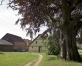 Latvijā lielākā lazda – dabas piemineklis Aizputē
