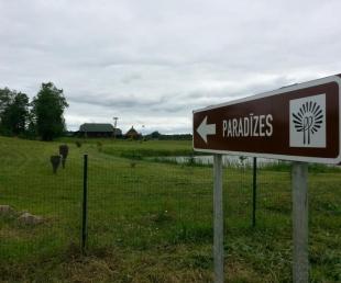 Paradizes Guest house