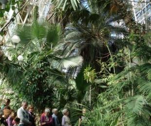 Tartu universitātes botāniskais dārzs