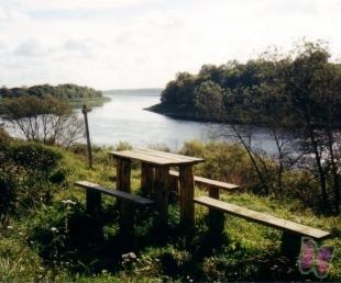 Piedrujas taka Daugavas ielejā