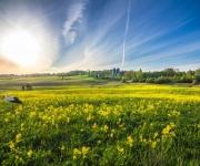 Vecpiebalgas novada Tūrisma informācijas punkts