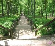 Grāfu Plāteru parks